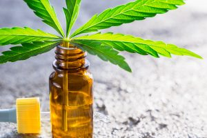 ingest cbd oil
