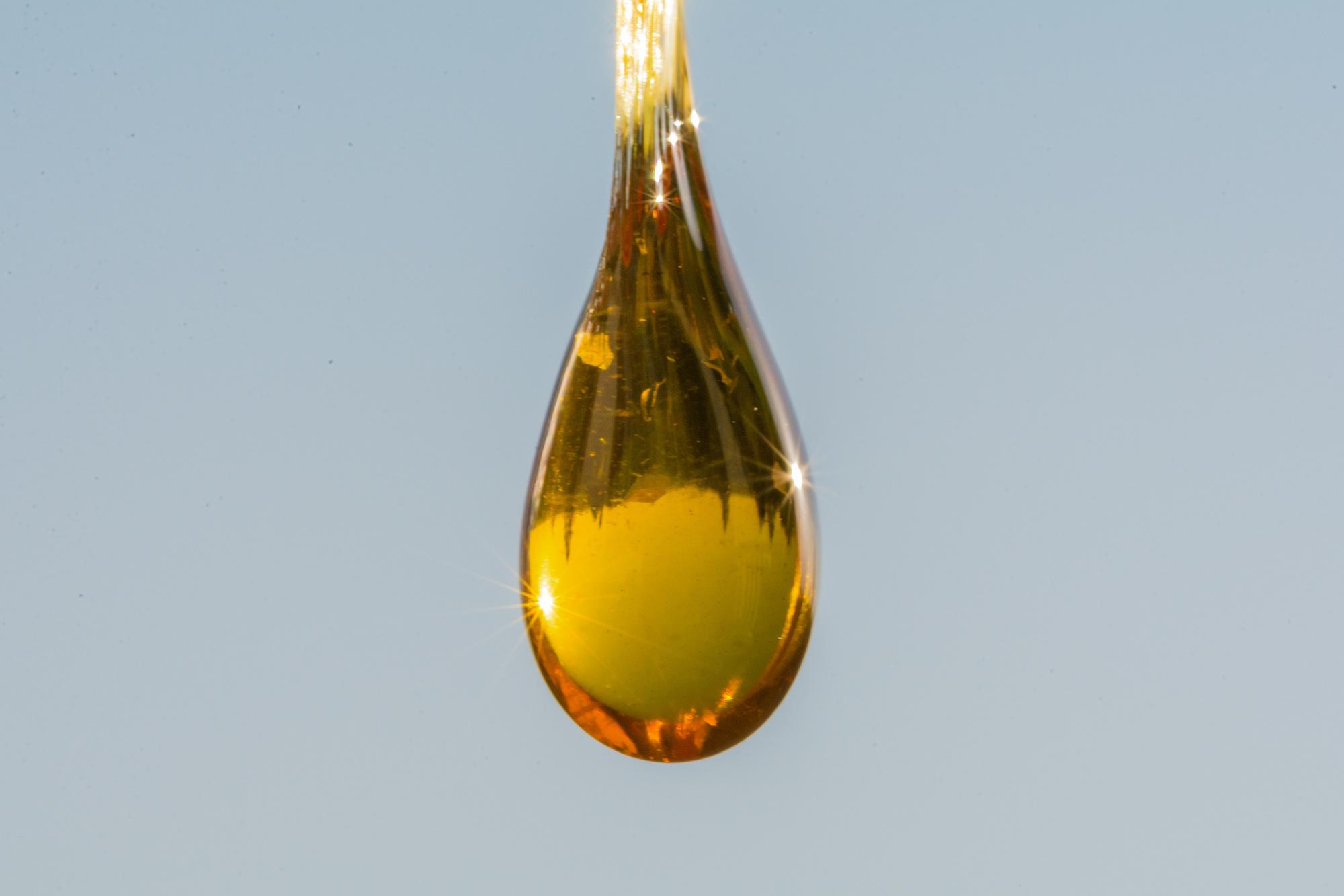 how to ingest cbd oil